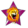 Know About Leostar