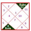 Rahu in 12 houses