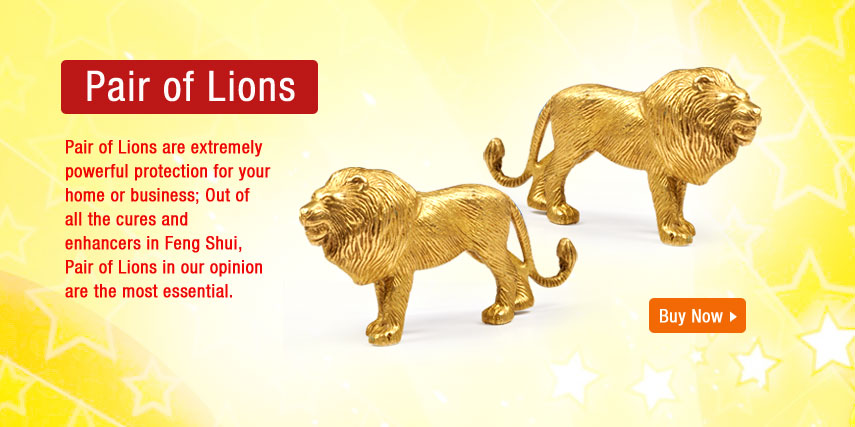 pair-of-lion