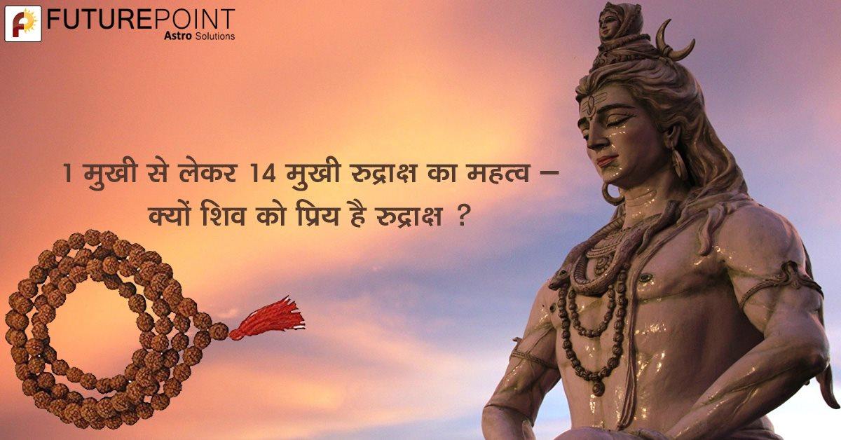 1 मुखी से लेकर 14 मुखी रुद्राक्ष का महत्व – क्यों शिव को प्रिय है रुद्राक्ष ?