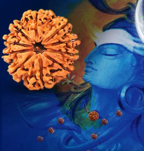Benefits Of Wearing Rudraksha Ratna