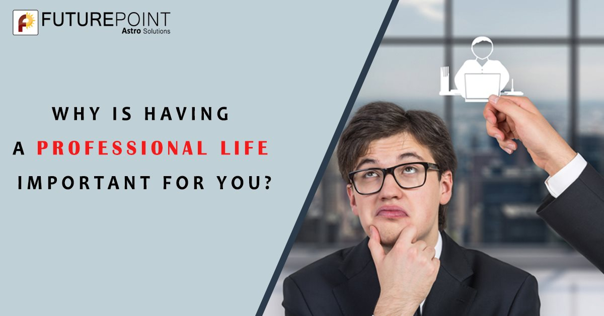 Why is Having a Professional Life Important For You?