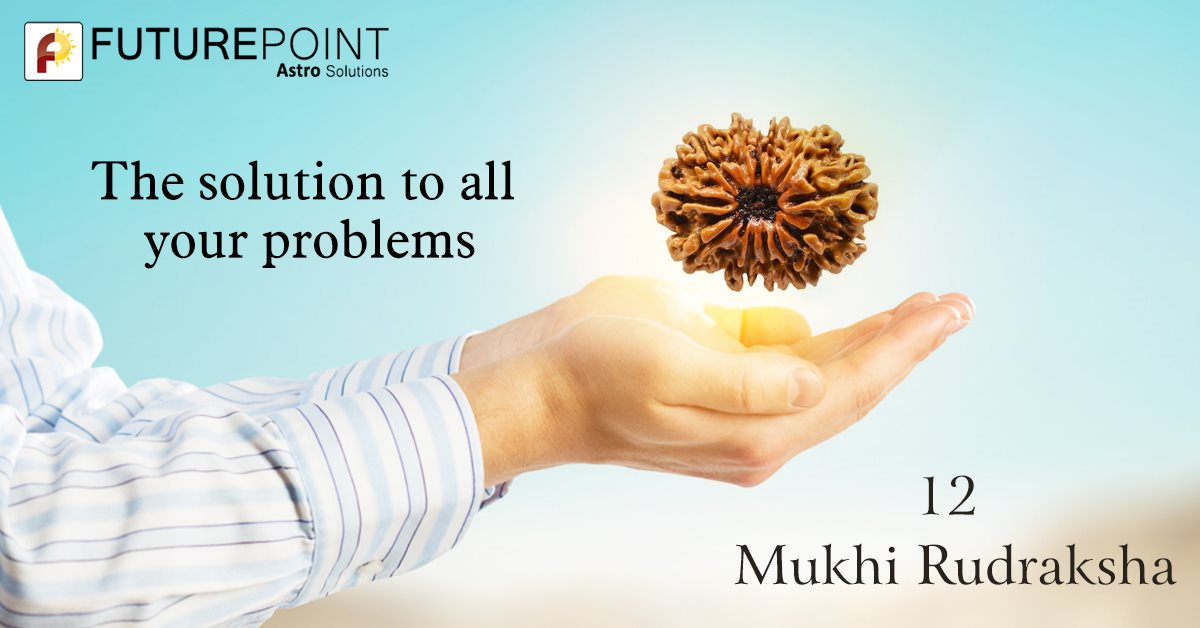 The solution to all your problems- 12 Mukhi Rudraksha