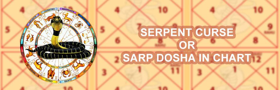 Serpent curse or sarp dosha in chart