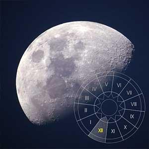 Moon in 12 houses