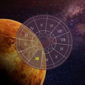 Venus in 12 houses