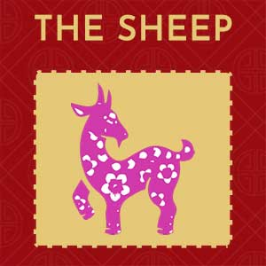 The Sheep (Ram)