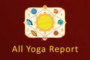 All Yoga Report