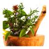 उपाय, उपचार और वनस्पति तंत्र