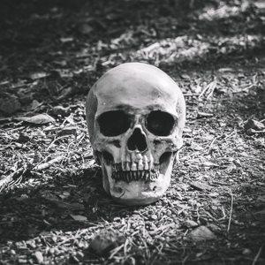 भूत प्रश्नोत्री