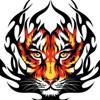 टाइगर आइ (बाघमणि)